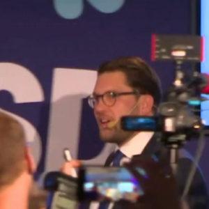 """Keiner will mit den Schwedendemokraten """"spielen"""""""