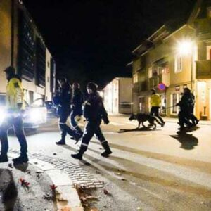 Dänischer Staatsbürger nach fünf Morden in Kongsberg festgenommen